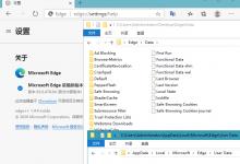 Microsoft Edge msi安装包-小李子的blog