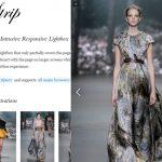 Strip JS – 低侵入,响应式的 Lightbox 效果-小李子的blog