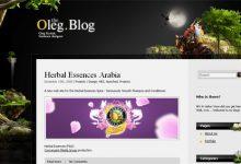 分享21个精美的博客网站设计案例-小李子的blog