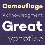 英文字体免费下载:10款最新的高品质字体-小李子的blog