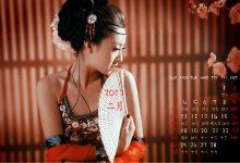 精美高清壁纸:2013年2月桌面日历壁纸免费下载-小李子的blog