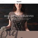 盘点2013年那些最优秀的网页设计作品【系列三】-小李子的blog