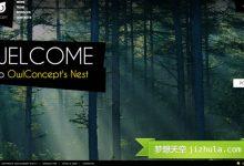 25个优秀的设计机构网站设计案例-小李子的blog
