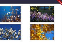iHover – 30+ 纯 CSS 实现的超炫的图片悬停特效-小李子的blog