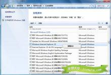 Win7 安装 IE10 后蓝屏重启及浏览器出现黑条的解决办法-小李子的blog