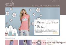 25个国外优秀电子商务网站设计案例-小李子的blog