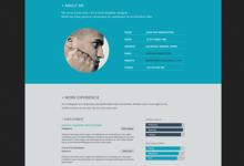 分享10个创新的扁平风格的简历页面设计-小李子的blog