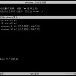 USBOS V3.0标准版/增强版(更新到2020.12.2)-小李子的blog
