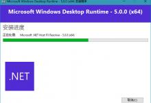 Microsoft .NET Runtime v5.0.1官方正式版-小李子的blog